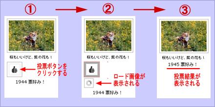 ngg-vote1